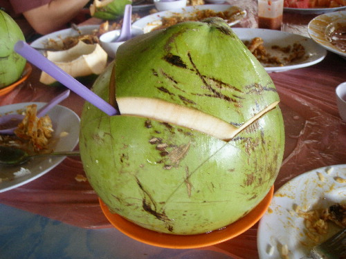 A Fresh Coconut Drink