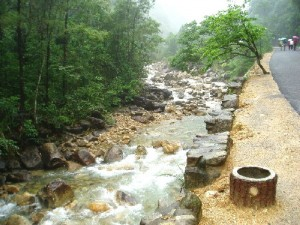 A stream in Gu Po Mountain