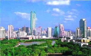Shenzhen City Skyline