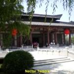 Nectar Temple