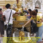 Pouring water onto Lord Buddha and animal stutues and making a wish