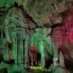 """""""Aliens"""""""