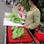 A lotus seed vendor