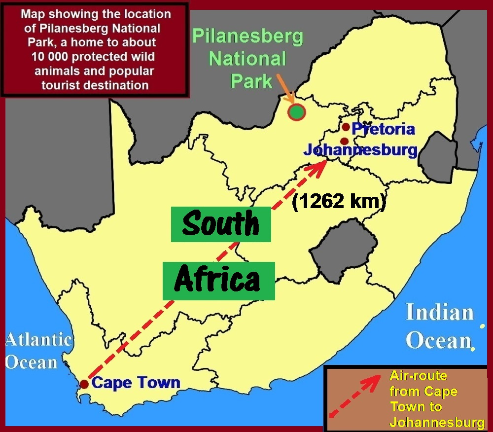 South Africa Travel Part V Cape Town to Johannesburg Travel Cities