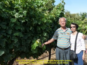 Choo Chaw and wife together with fellow-Malaysians visiting Neethlingshof Wine Estate
