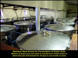 Grape juice with yeast fermenting in these stainless steel drums