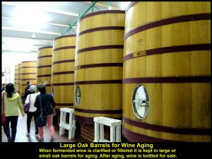 Large oak drums for wine aging so that the wine has flavours and textures.