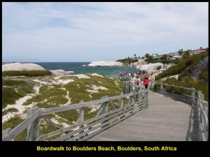 Boardwalk to Boulders Beach which is home to many penguins