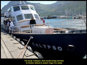 Calypso, a boat that would bring passengers to Duiker Island to see seals
