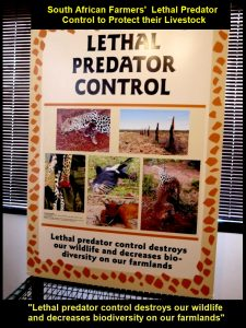 South African farmers' used lethal predator control to protest their livestock.