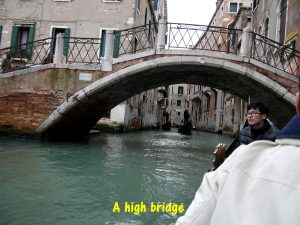 A high bridge in Venice
