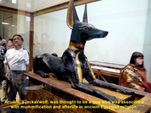 Anubis, a god associated with mummification and afterlife in ancient Egyptian religion