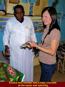 A brave tour member holding a baby crocodile for a camera shot while the owner was watching