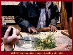 Water in strips are squeezed out by a pin roll.