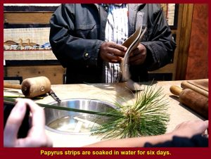 Strips are soaked in water for six days.