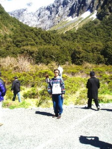 Mountain vegetation near Homer Tunnel