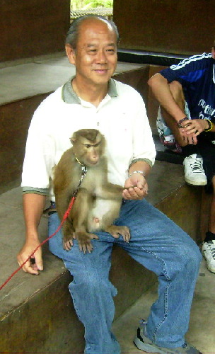 Writer befriending a monkey at the Monkey Centre