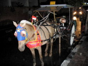 A horse-drawn carriage at Kuta
