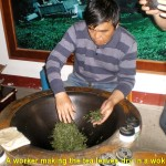 A worker showing the tourists the way green tea leaves were dried in a large wok