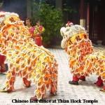 A lion dance at Thian Hock Temple