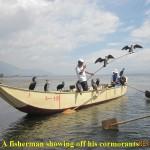 A proud Bai fisherman with his cormorants