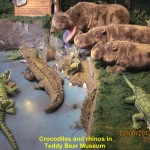 Crocodiles and rhinos in Teddy Bear Museum