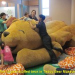 The Largest Stuffed Bear in Museum