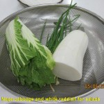 Napa cabbage and white raddish for salads