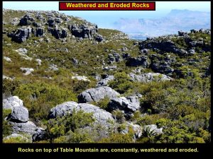Weathered and eroded rocks on top of Table Mountain
