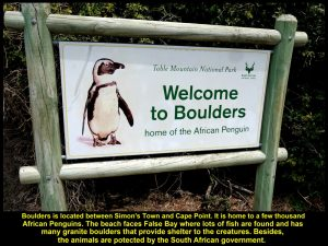 A signboard welcoming visitors to Boulders to see Africa Penguins