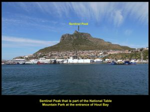 Sentinel at the entrance of Hout Bay
