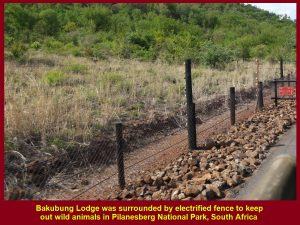 Electrified fence round Bakubung Lodge in Pilanesberg National Park to keep out wild animals