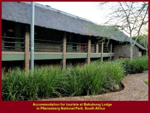 Accommodation for tourists at Bakubung Lodge in Pilanesberg National Park, South Africa