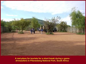 A rest-place for tourists to take a break during a 3-4 hour game-drive(safari)