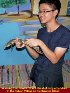 A young, brave tour member holding a baby crocodile fot a camera shot