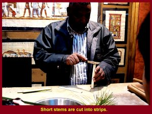 Stems are cut into thin strips.