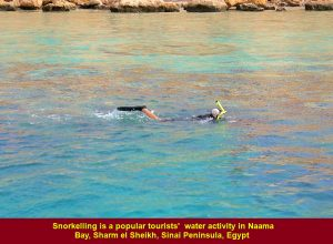 Snorkelling is a tourists' popular water activity in Naama Bay, Sharm el Sheikh