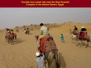 Tourists, including our tour group, love camel riding near the Giza Pyramid Complex in the Sahara Desert, Egypt,