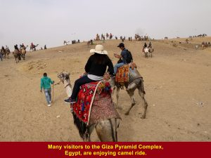 Many tourists going for camel ride at the Giza Pyramid Complex in Sahara Desert, Egypt